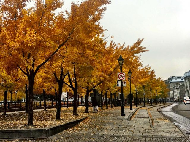Rue de la Comune